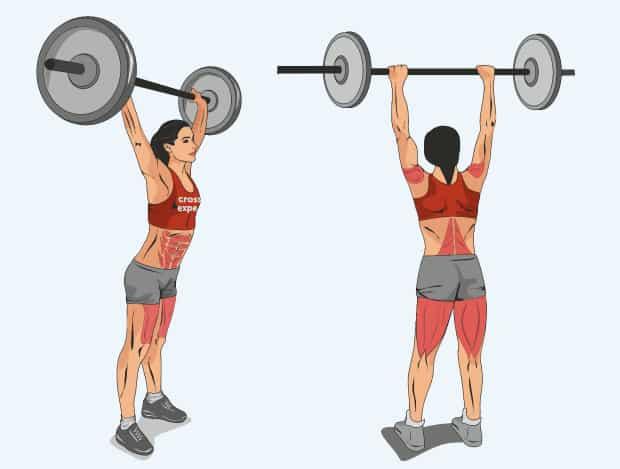 Мышцы, работающие в трастерах