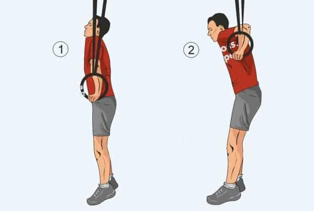 Техника упражнения отжимания на кольцах