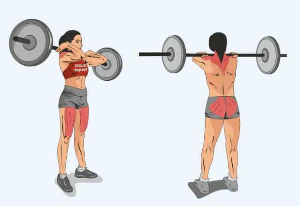 Мышцы, работающие при взятии штанги на грудь