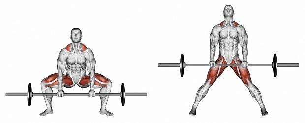 Мышцы, работающие при тяге в стиле сумо