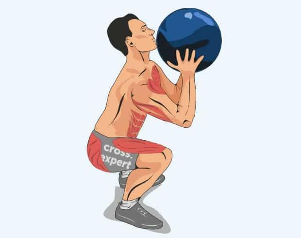Мышцы, работающие в бросках мяча в цель