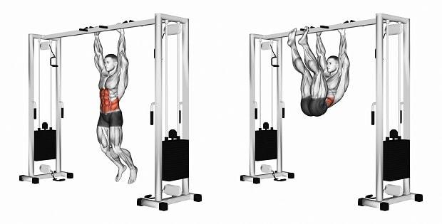 Мышцы, работающие при подъеме ног к перекладине