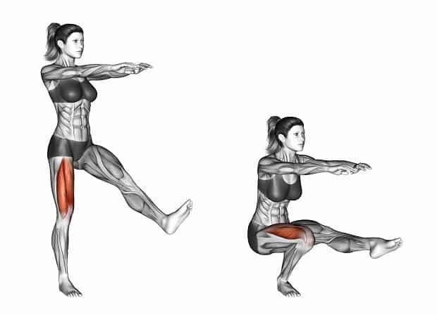 Мышцы, работающие при приседаниях на одной ноге