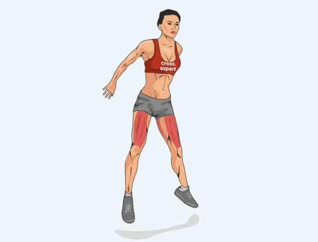 Мышцы, работающие в приседаниях с выпрыгиванием