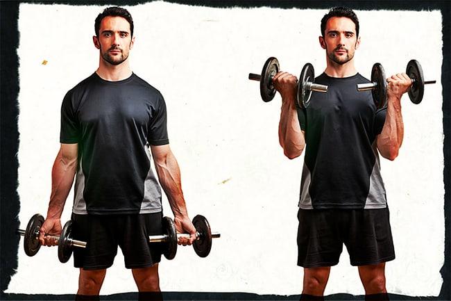 Базовые упражнения на бицепс и трицепс