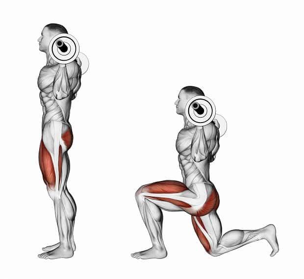 Мышцы, работающие при выпадах