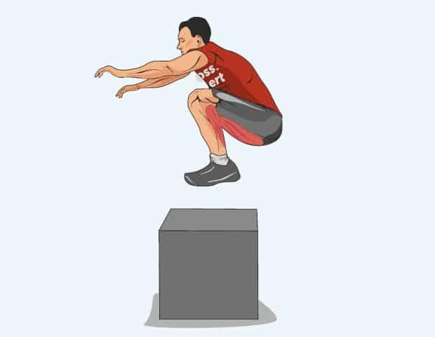 Мышцы, работающие при перепрыгивании через коробку