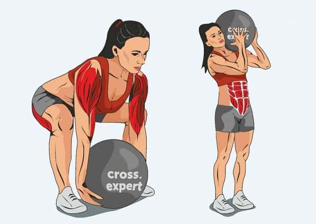 Мышцы, работающие при броске мяча через плечо