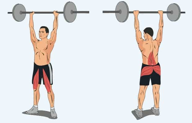 Мышцы, работающие в ходьбе со штангой над головой