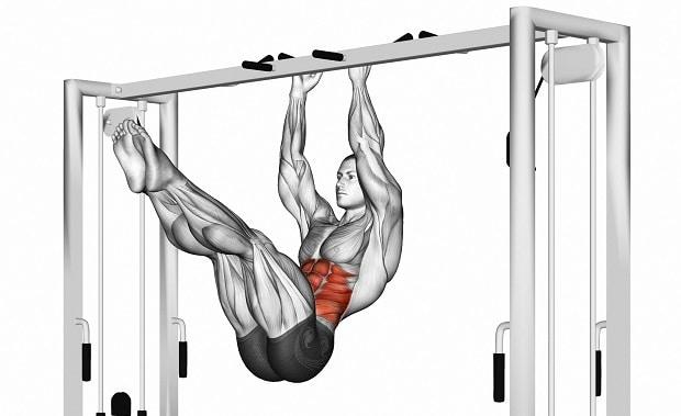 Мышцы, работающие при подтягивании колен к локтям