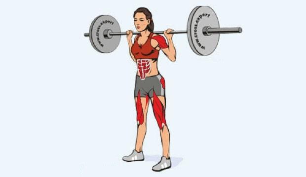 Мышцы, работающие в силовом балансовом рывке