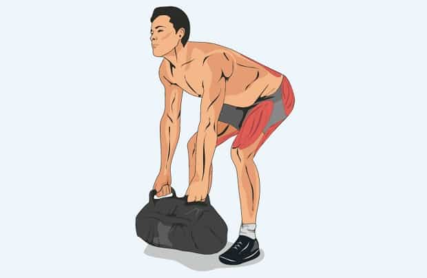 Мышцы, работающие при становой тяге мешка