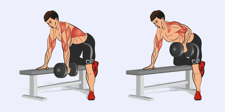 тяга гантели - какие мышцы работают
