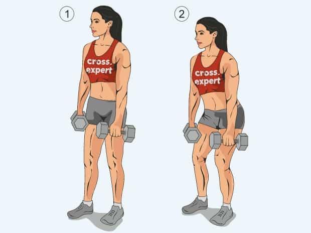 Первая фаза упражнения взятие гантелей с виса на грудь