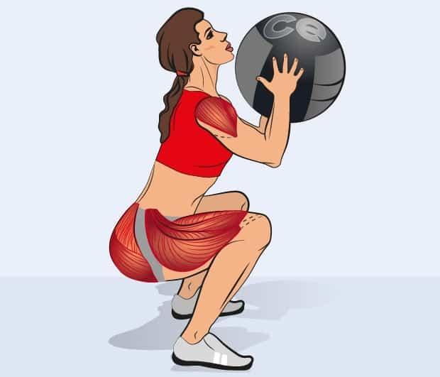 Мышцы, работающие при взятии медбола на грудь