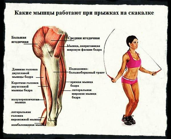какие мышцы работают при прыжках на скакалке