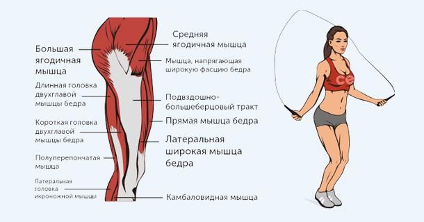 какие мышцы работают (скакалка)