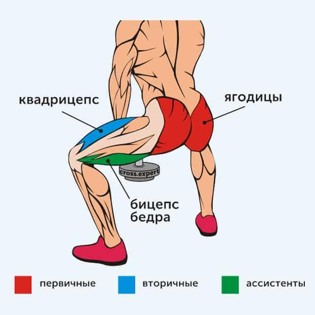 плие с гантелей - какие мышцы работают