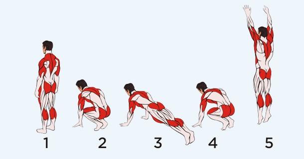 Берпи с прыжком вперед - мышцы