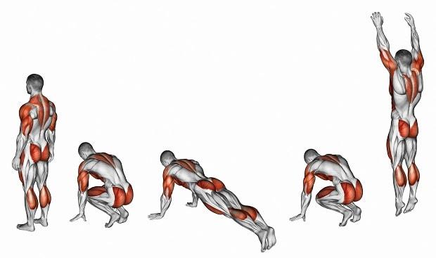 Мышцы, работающие при берпи с прыжком вперед