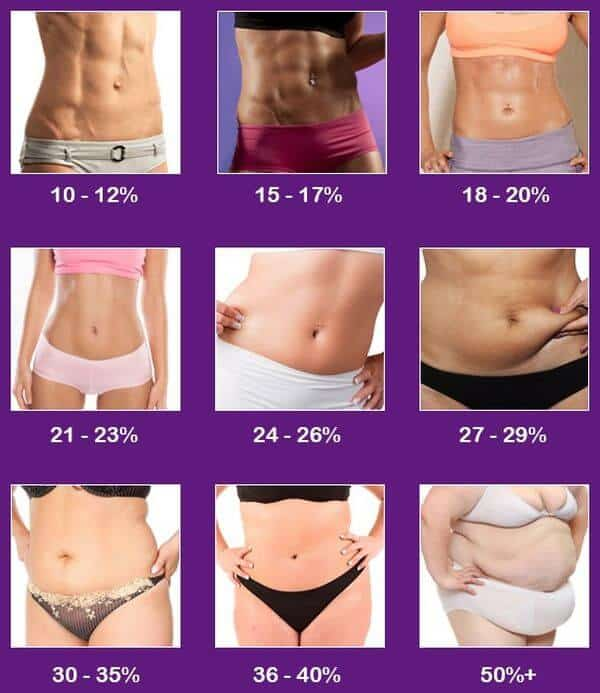 Процент жировой ткани в организме женщины