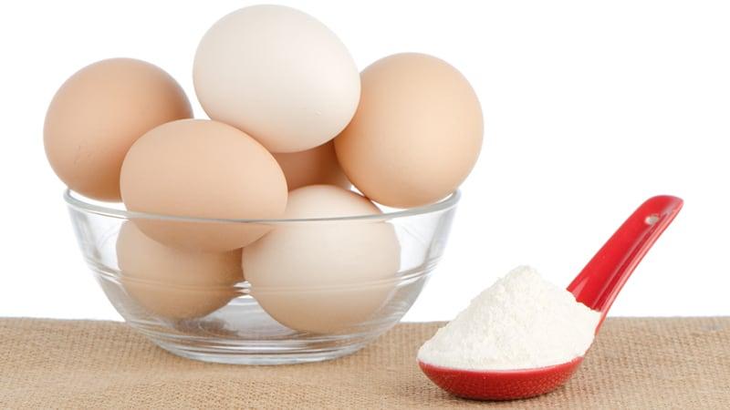 Что такое яичный протеин