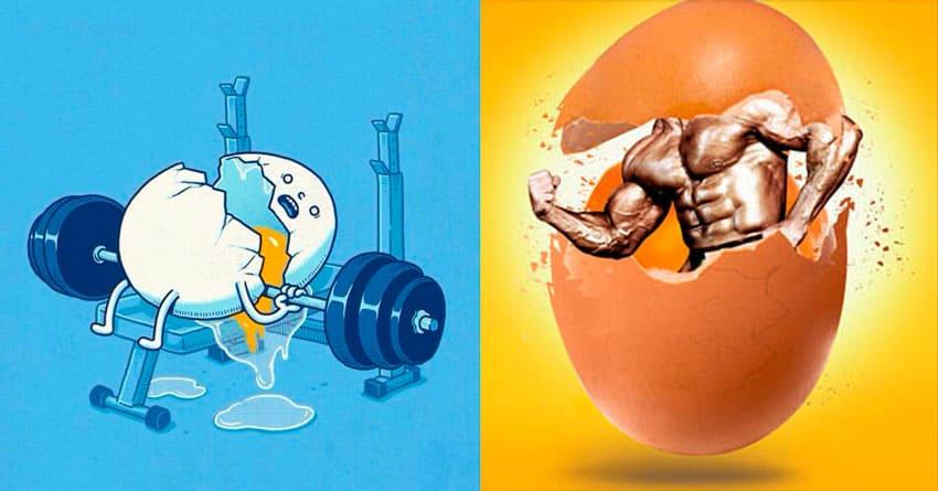 Преимущества и недостатки яичного протеина