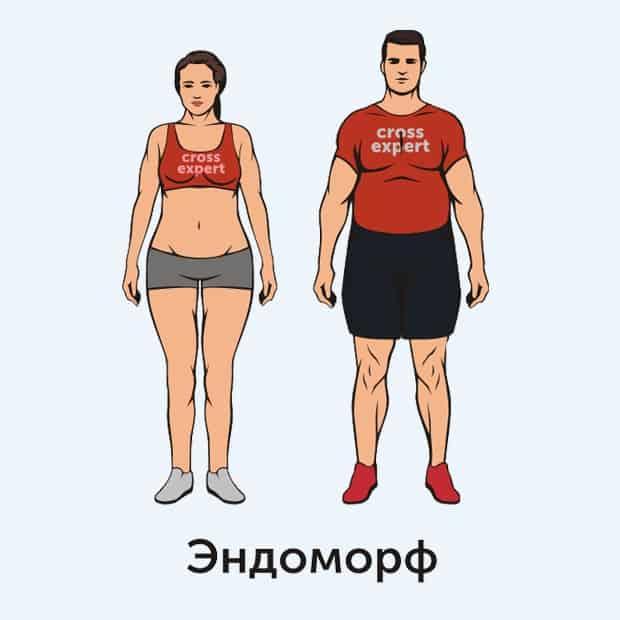 эндоморф - тип телосложения