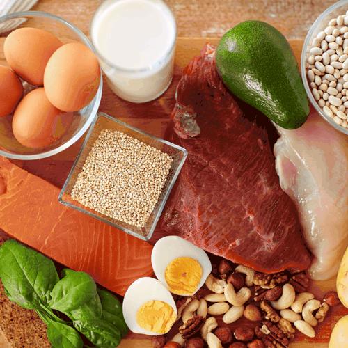 Факторы, определяющие базальный метаболизм