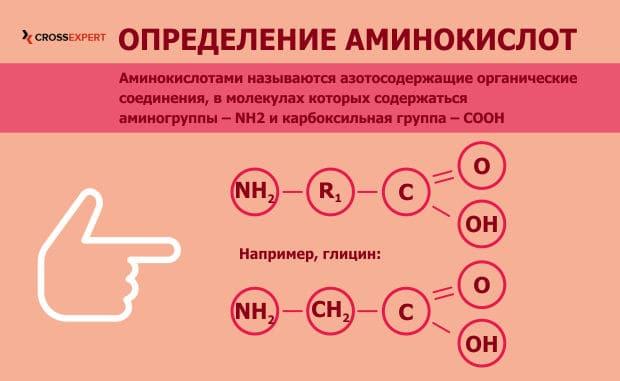 определение аминокислот