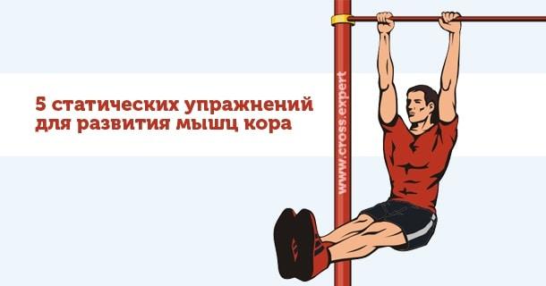упражнения для развития мышц кора