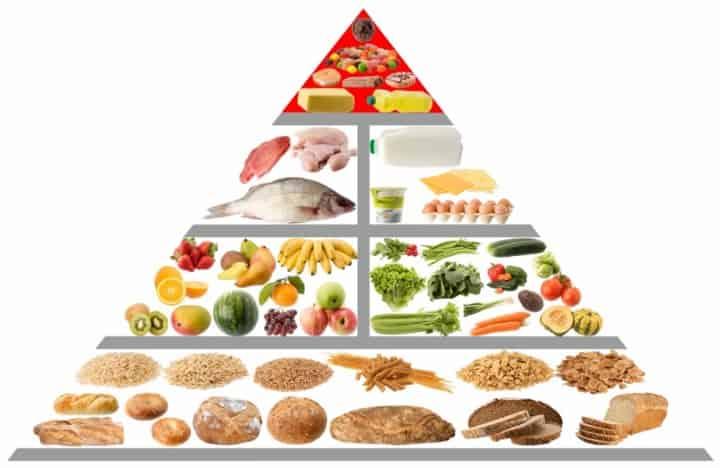 Общие сведения про пищевую пирамиду