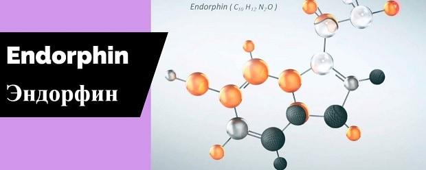 эндорфин