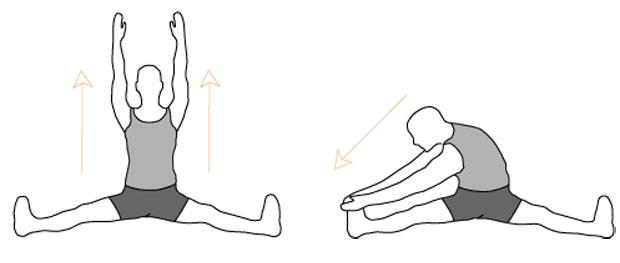 Наклоны сидя с широко расставленными ногами
