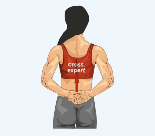 Растяжка передней поверхности плеча