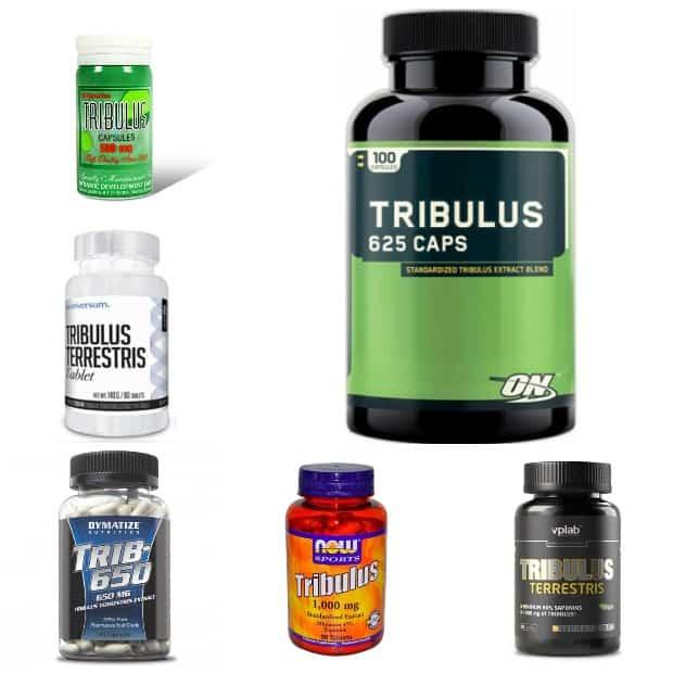 Трибулус в таблетках