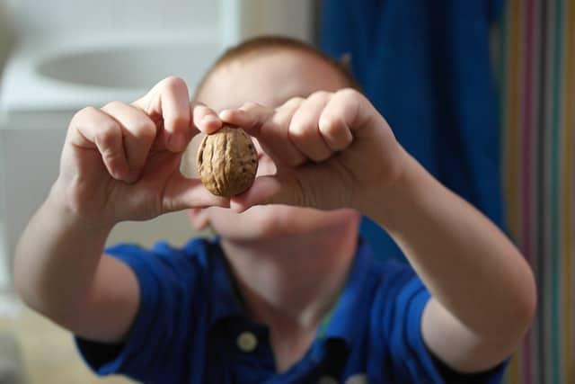 Полезные свойства грецкого ореха для детей