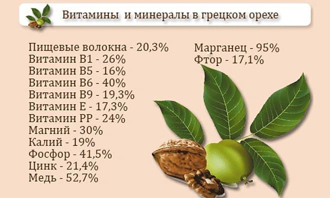 Витаминно-минеральный состав грецкого ореха