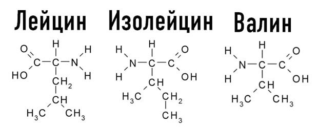 Формулы незаменимых аминокислот