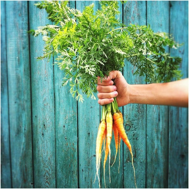 Морковь хороший продукт с отрицательной калорийностью