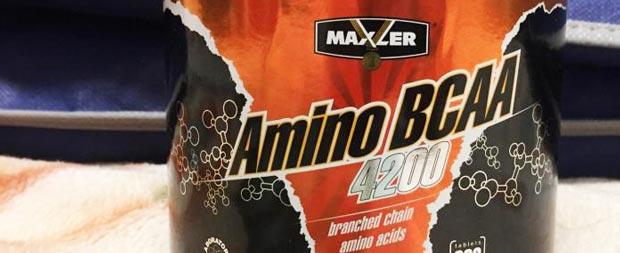 BCAA Maxler Amino BCAA 4200