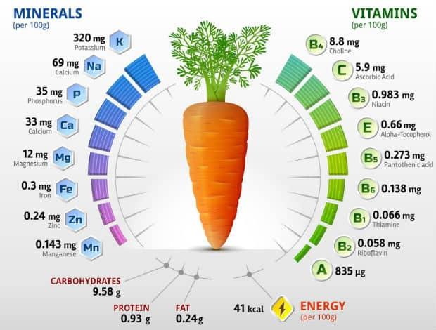 минеральный и витаминный состав моркови