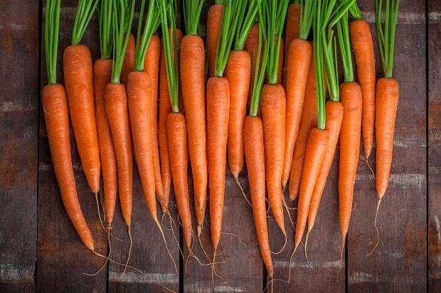 свежая помытая морковь с ботвой