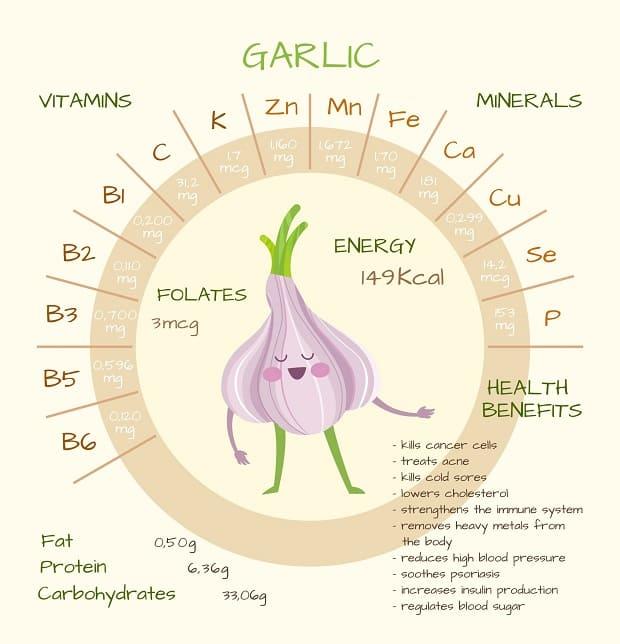 схема витаминов и минеролов чеснока