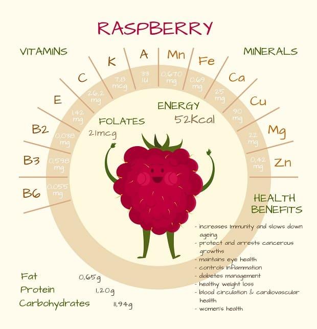 схема витаминов и минералов в малине