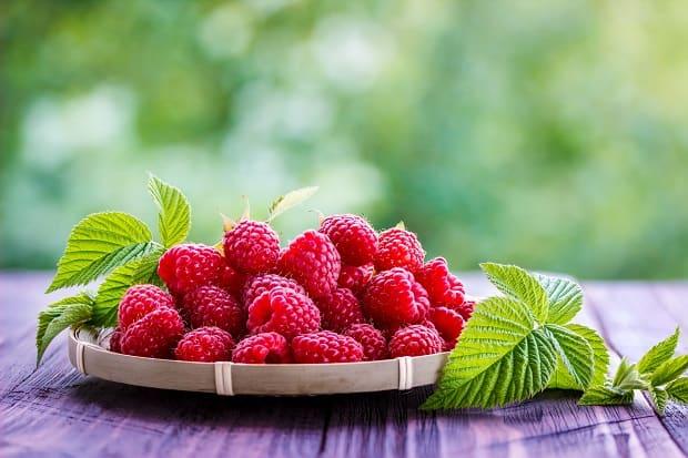 красные ягоды малины с листвой на подставке