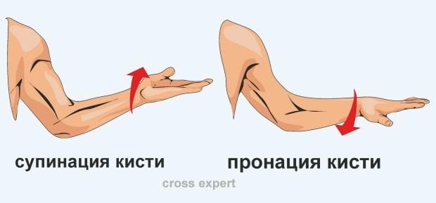 Упражнение супинация-пронация