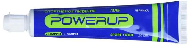 Гель Powerup со вкусом черники