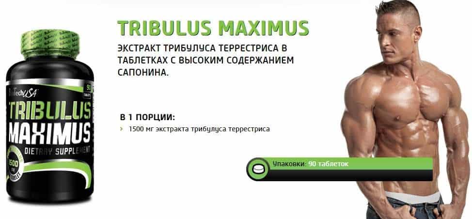 Описание добавки BioTech Tribulus Maximus