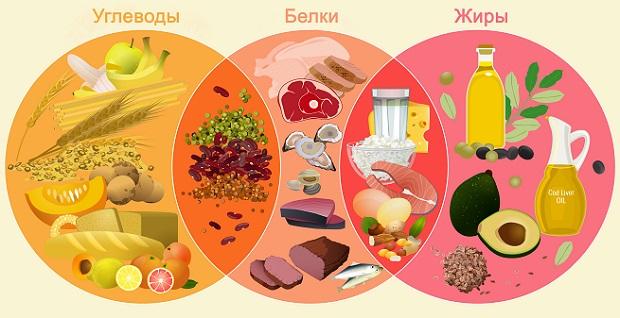 белки, жиры и углеводы в продуктах